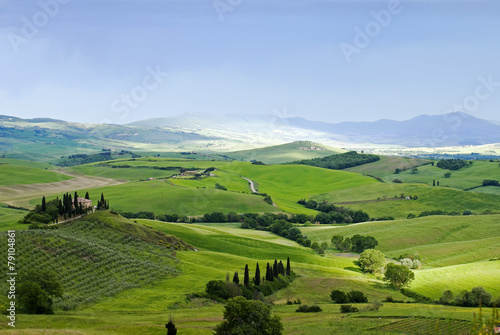 Fototapety, obrazy: Rural house on the hill among vineyards