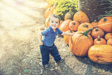 Young Boy Picking Out A Pumpkin