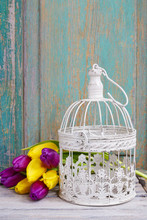 Vintage Birdcage And Bouquet Of Yellow And Violet Tulips