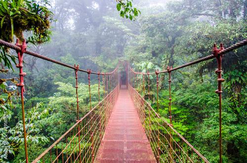 Obraz na płótnie Most linowy w lesie