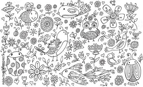 Canvas Prints Cartoon draw Flower Bird Doodle Vector Illustration Set