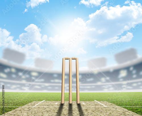 Stampa su Tela Cricket Stadium And Wickets