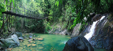 Rope Bridge Over A River In The Jungle