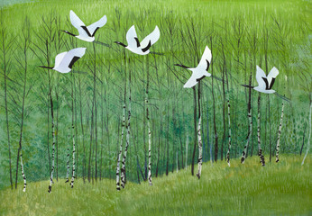 Obraz flight of cranes