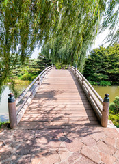 FototapetaChicago Botanic Garden, bridge to Japanese Garden area
