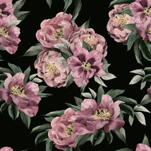 Seamless Floral Pattern With Red, Purple And Pink Roses On Black