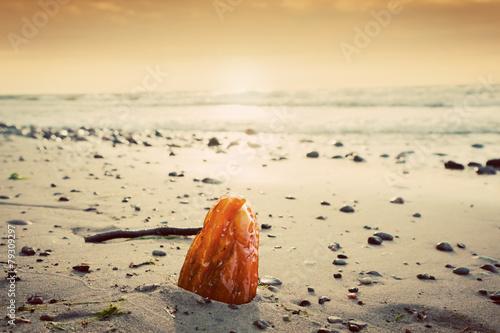 Canvas Print Amber stone on the beach. Precious gem, treasure. Baltic Sea