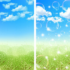 新緑 空 背景