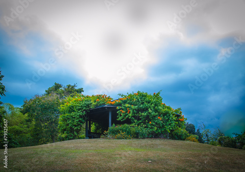 Photo  Pavilion on a hill in Botanical garden of Singapore