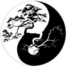 Black And White Bonsai Tree On The Yin Yang Symbol