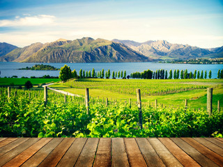 Beautiful Nature Countryside In New Zealand Concept