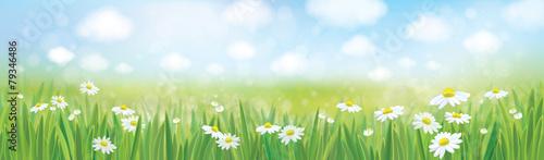 Frühling in den Wiesenvektoren