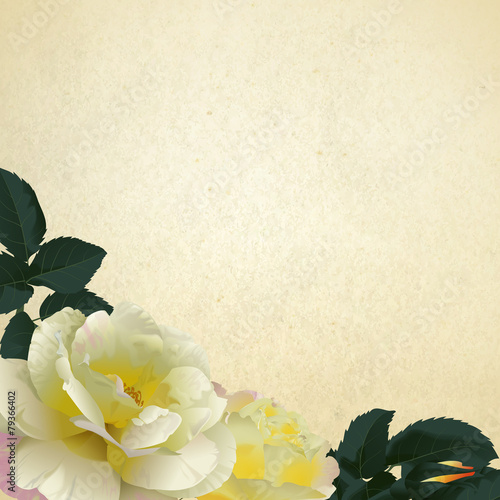 Photo  Floral background with yellow roses