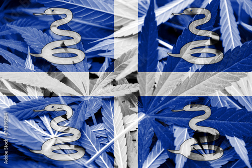 Poster Grafische Prints Martinique Flag on cannabis background. Drug policy.