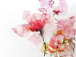 canvas print picture - blumen aquarell papier