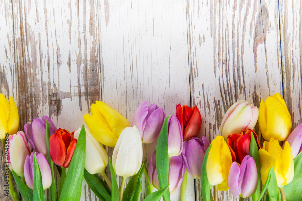 Beautiful tulips background