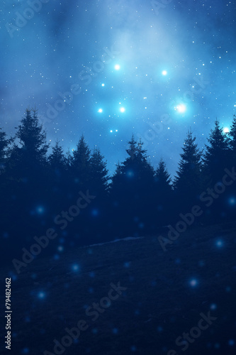 Deurstickers Nacht Starry night with forest silhouettes.