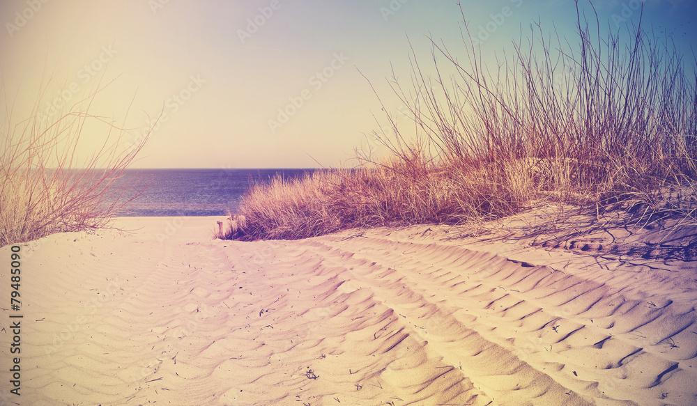 Vintage filtrowane plaży, tło natura lub baner. <span>plik: #79485090 | autor: MaciejBledowski</span>