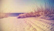 Vintage Filtered Beach, Nature...
