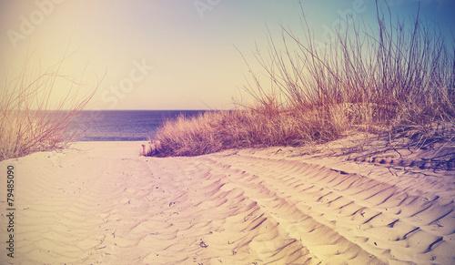 vintage-filtrowane-plazy-tlo-natura-lub-baner