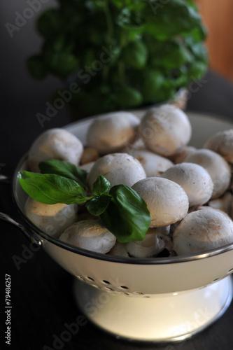Photo  frische champignons