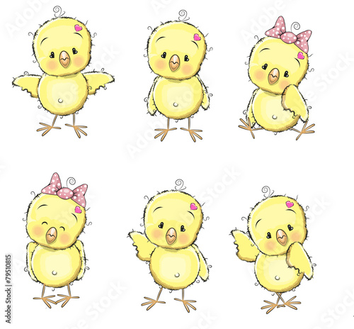Photo Six chicks