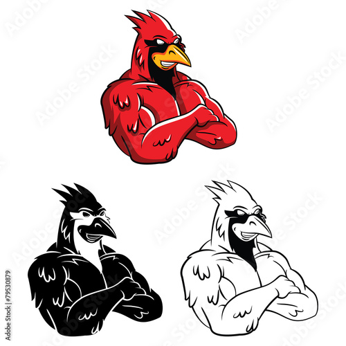 Coloring book Cardinal Bird cartoon character Tablou Canvas