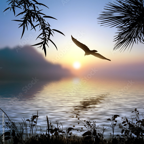 Poster Lavendel Beautiful landscape with birds