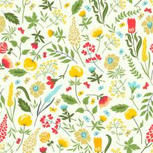 Seamless Floral Pattern With Flowers And Herbs