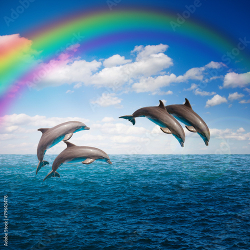 Photo  pack of jumping dolphins