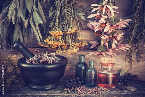 Foto auf AluDibond Buddha Vintage stylized photo of healing herbs bunches, black mortar a