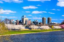 Boston Cityscape In Spring