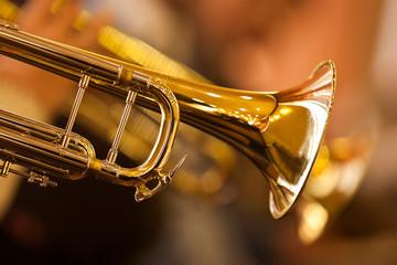 Obraz na płótnie Canvas Fragment trumpet closeup