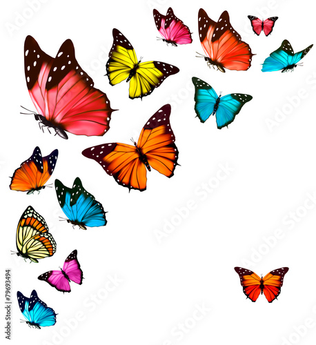 Background with colorful butterflies. Vector. - 79693494