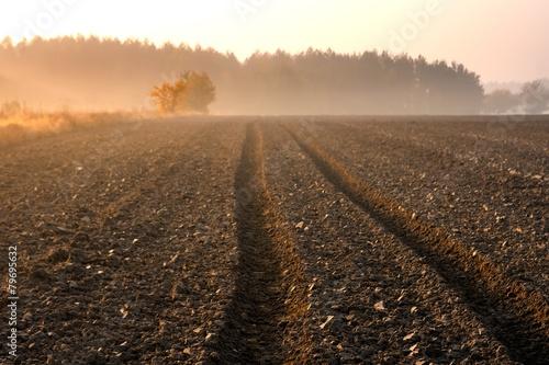 Photo  Plowed field landscape