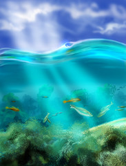 Fototapeta na wymiar Figure sky above water and underwater world, you can see the ref