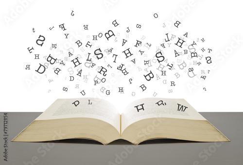 Dictionary Fototapeta