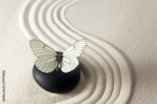 Keuken foto achterwand Stenen in het Zand Zen stone garden