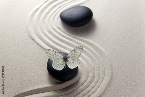 Recess Fitting Stones in Sand Zen stone garden