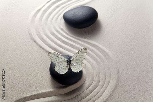 Foto auf Gartenposter Zen-Steine in den Sand Zen stone garden