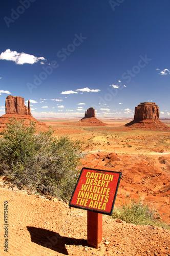 Stampa su Tela  Monument Valley, desert wildlife