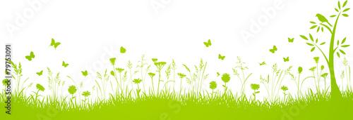 Fotografiet  Herbstwiese Hintergrund