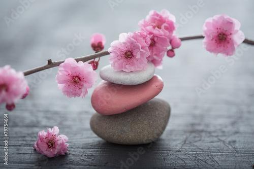 Tuinposter Zen fleurs zen