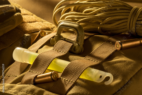 Photo  Molle plate with carabineer and glow stick