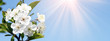 Leinwandbild Motiv Frühling Panorama