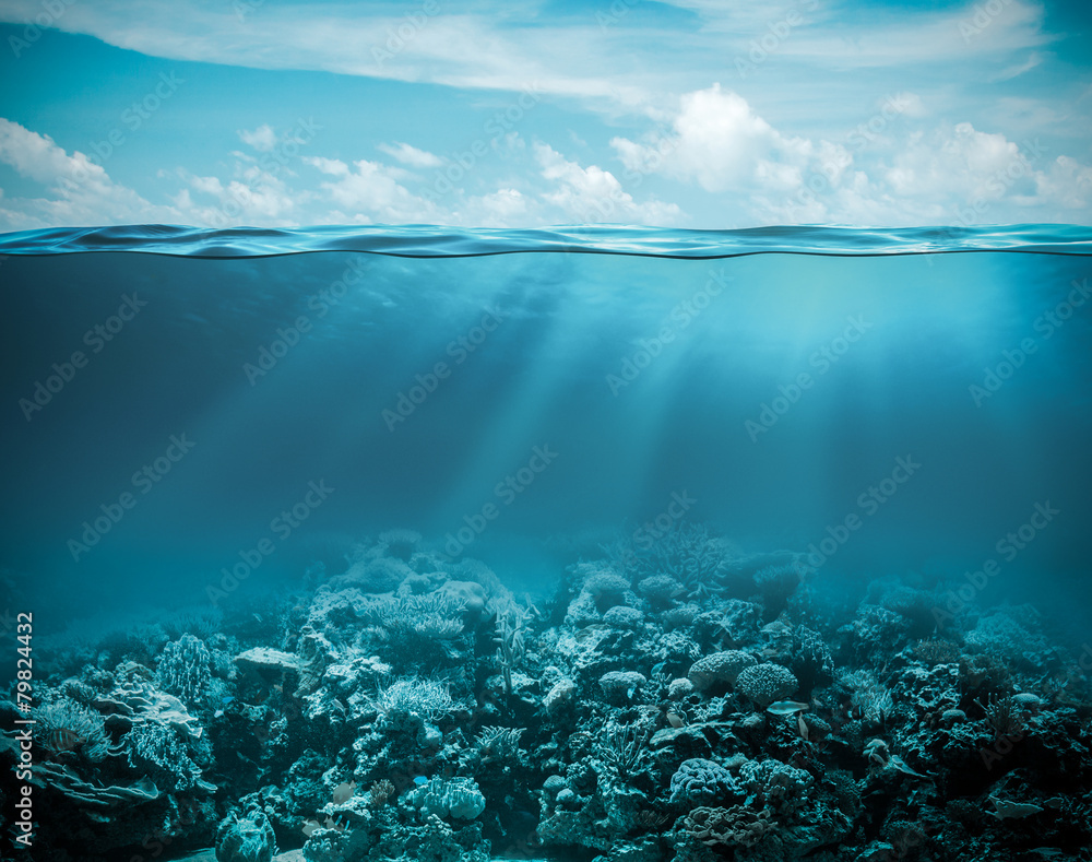 Fototapeta Sea or ocean underwater deep nature background