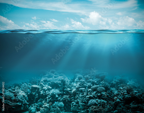 Slika na platnu Sea or ocean underwater deep nature background