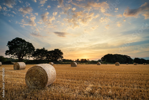 Poster Beige Rural landscape image of Summer sunset over field of hay bales