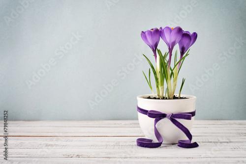 Stickers pour portes Crocus Crocus in vase