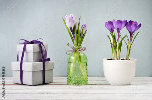 Gift boxes and crocus